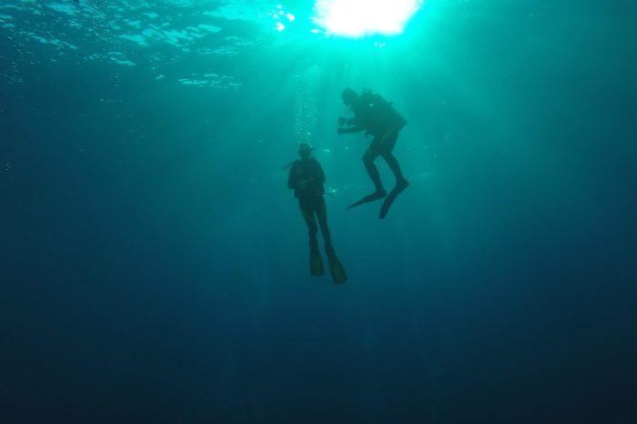 Plongée dans les Visayas